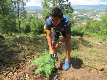 La Selección participo en una actividad de siembra de árboles