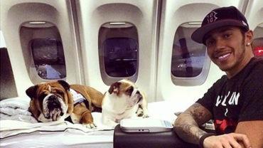 Bulldogs de Lewis Hamilton, con pases VIP para F1